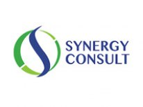 Synergy Consult